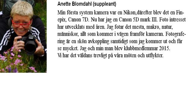 Info-Anette Blomdahl