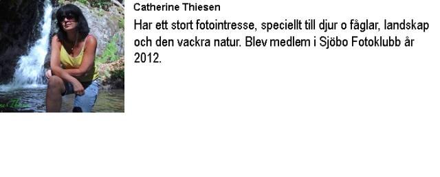 Info-Catherine Thiesen