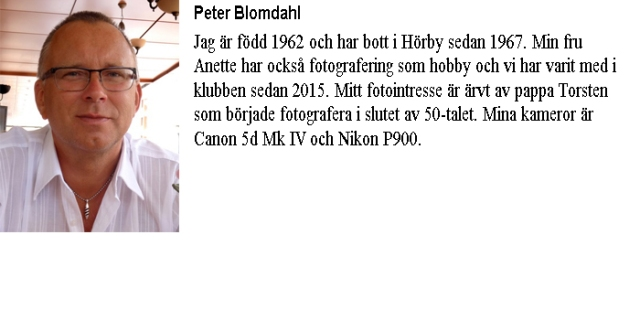 Info-Peter Blomdahl