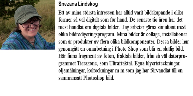 Info-Snezana Lindskog