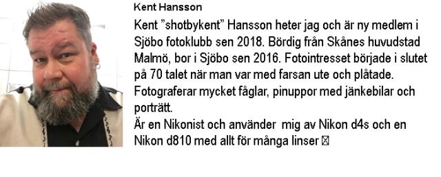Info-Kent Hansson